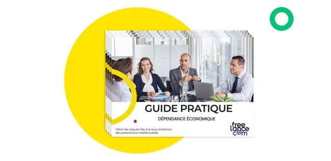 Guide_pratique_dépendance_économique_visuels
